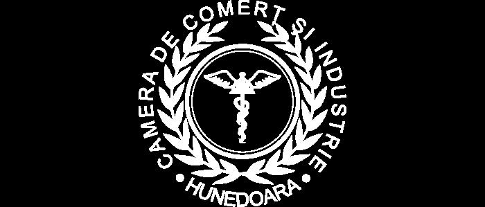 CCI Hunedoara